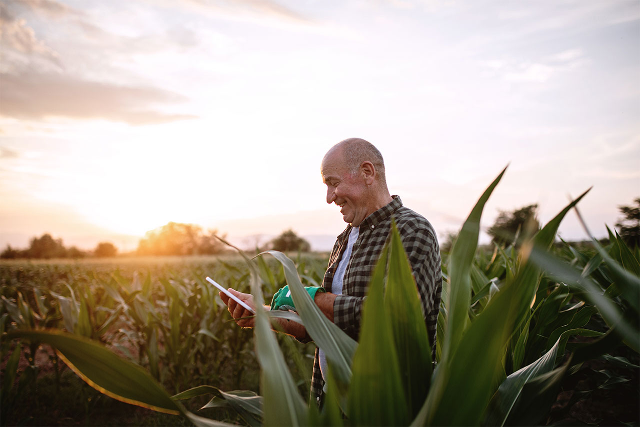 Senior farmer in rural field using modern technology to track work with high-speed wireless internet service